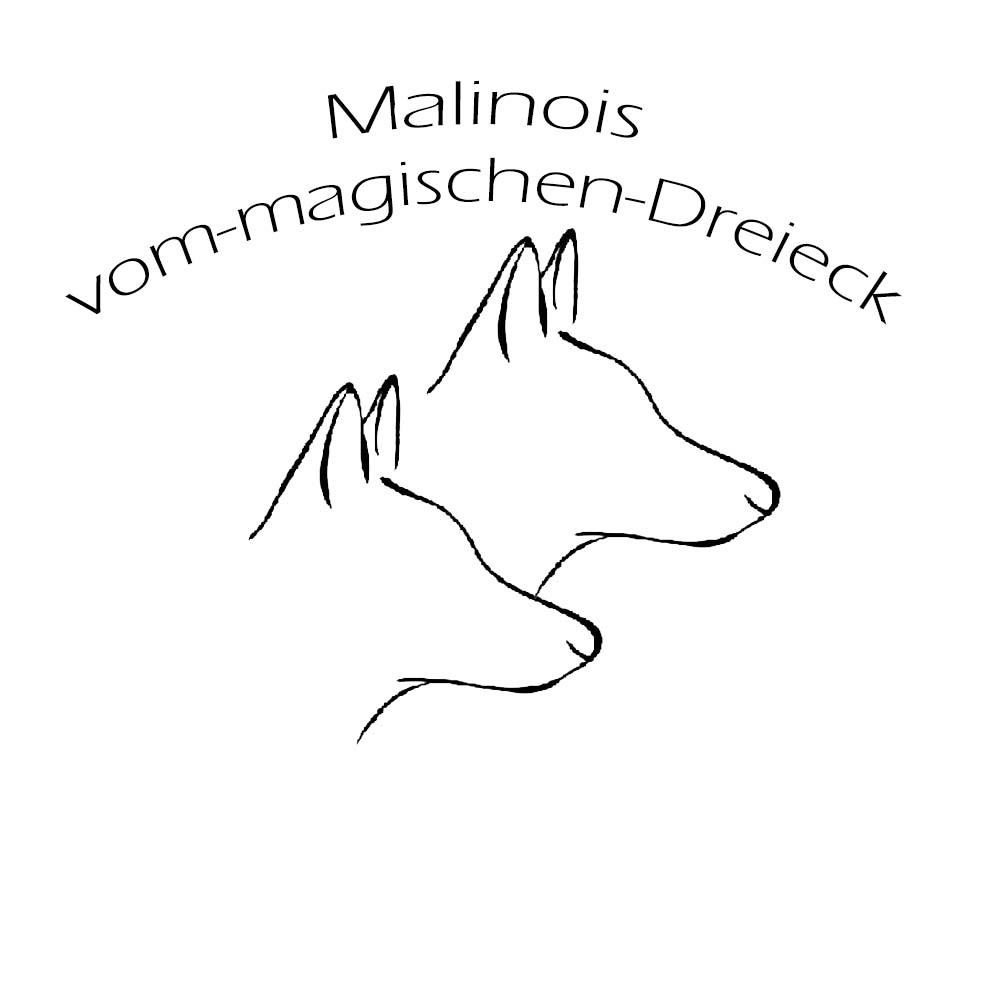 LOGO_Vom_magischen_Dreieck